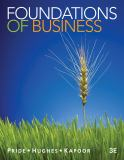 Foundations of Business 9781111580155