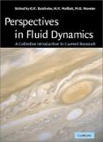 Perspectives in Fluid Dynamics 9780521780612