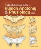 A Visual Analogy Guide to Human Anatomy and Physiology 9781617310669