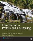 Introduction to Professional Counseling 1st Edition