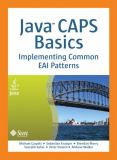 Java CAPS Basics 9780137130719