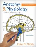 Anatomy and Physiology Coloring Workbook 11th Edition