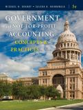 Government and Not-for-Profit Accounting 5th Edition