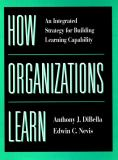 How Organizations Learn