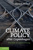 Climate Policy after Copenhagen 9781107401419