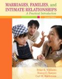 Marriages, Families, and Intimate Relationships 9780205521456