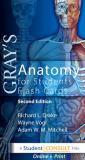 Gray's Anatomy for Students Flash Cards 9780702031724