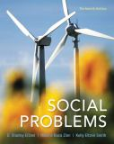 Social Problems 13th Edition