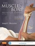The Muscle and Bone Palpation Manual with Trigger Points, Referral Patterns and Stretching 2nd Edition