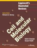 Cell and Molecular Biology 1st Edition
