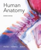 Human Anatomy with Mastering A and P 7th Edition