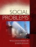 Social Problems 14th Edition
