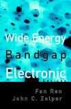 Wide Energy Bandgap Electronic Devices 9789812382467