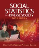 Social Statistics for a Diverse Society 9781412992534