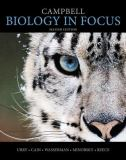 Campbell Biology in Focus Plus MasteringBiology with EText -- Access Card Package 9780321962584