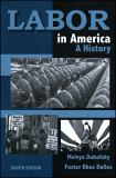 Labor in America 8th Edition