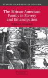The African-American Family in Slavery and Emancipation 9780521812764