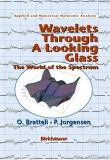 Wavelets Through a Looking Glass 9780817642808