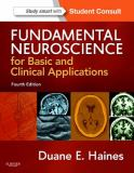 Fundamental Neuroscience for Basic and Clinical Applications 9781437702941