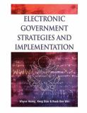Electronic Government Strategies and Implementation 9781591403494