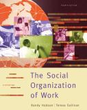 The Social Organization of Work 4th Edition