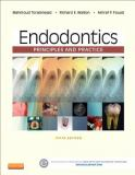 Endodontics 5th Edition