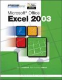 Microsoft Office Excel 2003 9780072834161