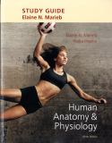 Study Guide for Human Anatomy and Physiology 9th Edition