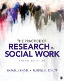 The Practice of Research in Social Work 3rd Edition