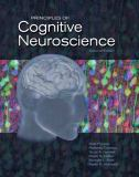 Principles of Cognitive Neuroscience 9780878935734