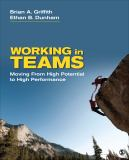 Working in Teams 1st Edition