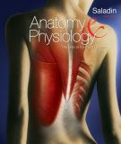Anatomy and Physiology - The Unity of Form and Function 9780077396336