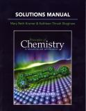 Solutions Manual for Principles of Chemistry 9780321586391