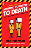 Amusing Ourselves to Death 20th Edition