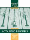 Problem Solving Survival Guide Vol. I, Chs. 1-12 to Accompany Accounting Principles 9780470386606