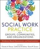 Social Work Practice with Groups, Communities, and Organizations 1st Edition