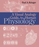 A Visual Analogy Guide to Human Physiology 9780895827074