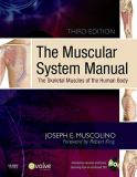The Muscular System Manual 3rd Edition