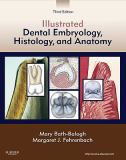 Illustrated Dental Embryology, Histology, and Anatomy 3rd Edition