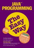 Computer Programming in Java the Easy Way 9780764107528