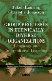Group Processes in Ethnically Diverse Organizations 9781616687618
