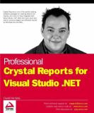 Crystal Reports for Visual Studio.NET 9781861007742
