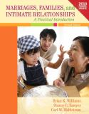Marriages, Families, and Intimate Relationships Census Update 2nd Edition