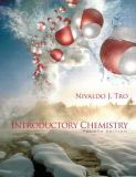 Introductory Chemistry 9780321687937