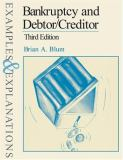 Bankruptcy and Debtor/Creditor 9780735528093