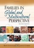 Families in Global and Multicultural Perspective 2nd Edition