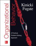 Organizational Behavior 1st Edition