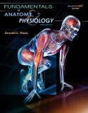 Fundamentals of Anatomy and Physiology 3rd Edition