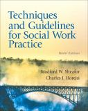 Techniques and Guidelines for Social Work Practice 9th Edition