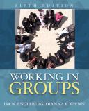 Working in Groups 5th Edition